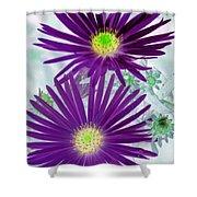 Purple Passion - Photopower 1604 Shower Curtain