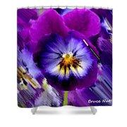 Purple Petunia Shower Curtain