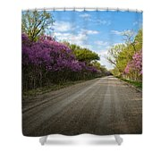 Purple Road Shower Curtain