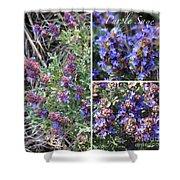 Purple Sage Collage Shower Curtain