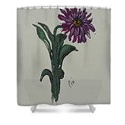 Purple Simplicity Shower Curtain