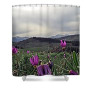 Purple Spring In The Big Horns Shower Curtain