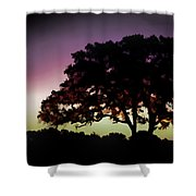 Purple Sunset Green Flash And Oak Tree Silhouette Shower Curtain