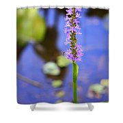 Purple Swamp Flower Shower Curtain