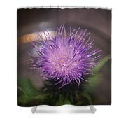 Purple Thistle Shower Curtain