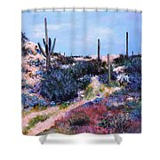 Purple Time Of Day Shower Curtain