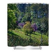 Purple Trees Shower Curtain