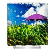Purple Umbrella In A Field Of Corn Shower Curtain by Bob Orsillo