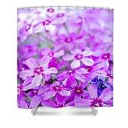 Purple Wildflower Shower Curtain
