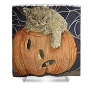 Purrfect Halloween Shower Curtain