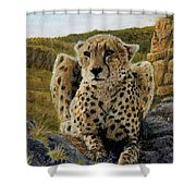 Purrfect View Shower Curtain