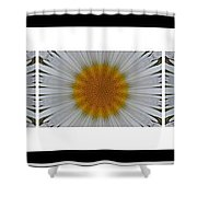 Pushing Up Daisies - Kaleidoscope - Pentaptych Shower Curtain