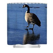 Put Your Best Foot Forward Shower Curtain