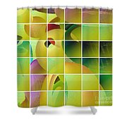 Puzzle Solved Shower Curtain