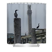 Pyrates On The Dock Shower Curtain