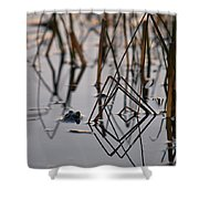 Pythagoras The Frog Shower Curtain