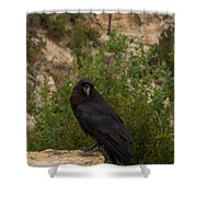 Qouth The Raven Nevermore Shower Curtain