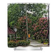 Quaint Park In Demopolis Alabama Shower Curtain
