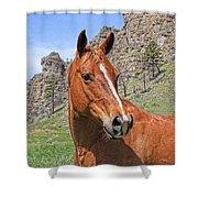 Quarter Horse Portrait Montana Shower Curtain