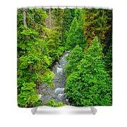 Quartz Creek Shower Curtain