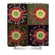 Quatro Floral - 0102cba Shower Curtain