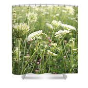 Queen And Clover Shower Curtain