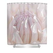 Queen Pink Dahlia Flower Shower Curtain