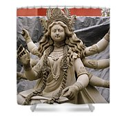 Queen Durga Shower Curtain by Shaun Higson