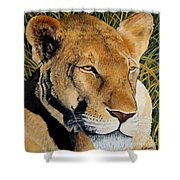 Queen Of The African Savannah Shower Curtain
