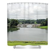 Queen Pool Blenheim Shower Curtain