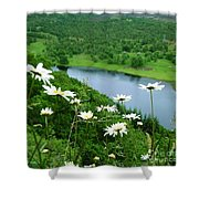 White Daisies At Queen's View 2 Shower Curtain