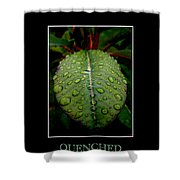 Quenched 2 Shower Curtain