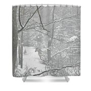 Querida In The Snow Storm Shower Curtain