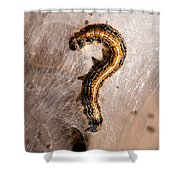 Question Mark Shower Curtain
