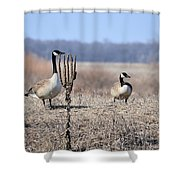 Quick Put Your Head Down Shower Curtain