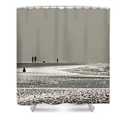 Quick Silver Shower Curtain