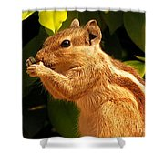 Quick Snack Shower Curtain