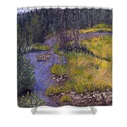 Quiet Creek Shower Curtain by Ginny Neece