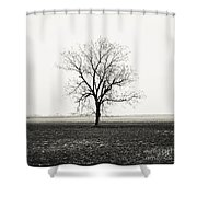 Quiet Desperation Shower Curtain