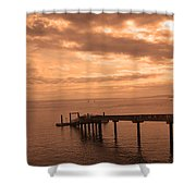 Quiet Peachy Toned Pier Shower Curtain