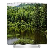 Quiet Rain And Forest Fairies Shower Curtain