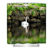 Quiet Times Shower Curtain