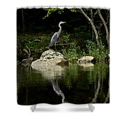 Quiet Waters Shower Curtain