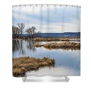 Quiet Wetlands Shower Curtain