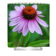Quietly Sitting All Alone Shower Curtain