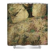 Quietude Of The Forest Shower Curtain