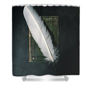 Quill And Book Shower Curtain