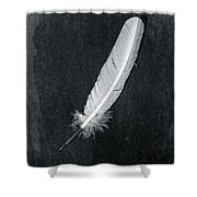 Quill Shower Curtain