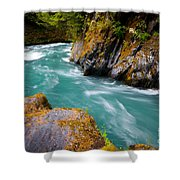 Quinault River Bend Shower Curtain