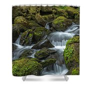 Quinault Waterfall Shower Curtain